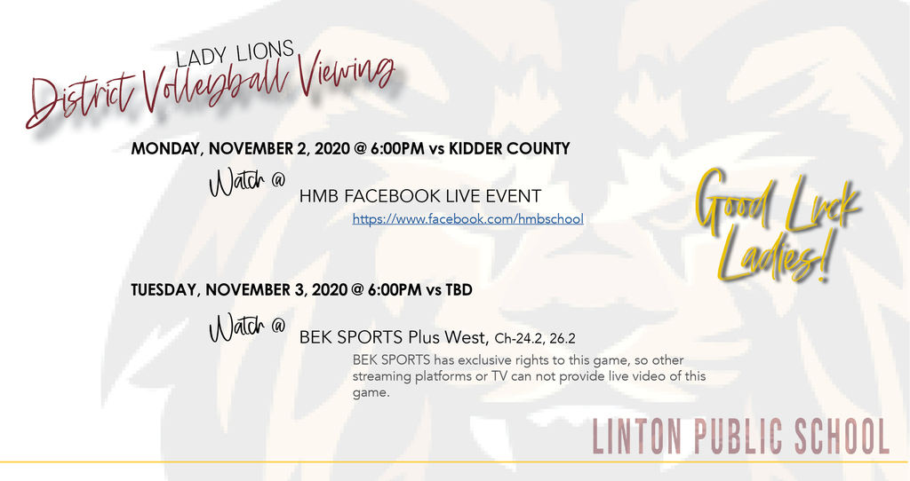 District Volleyball Viewing Options