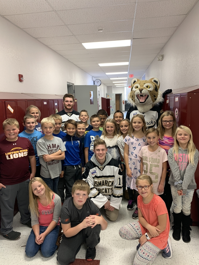 3rd grade with bobcats