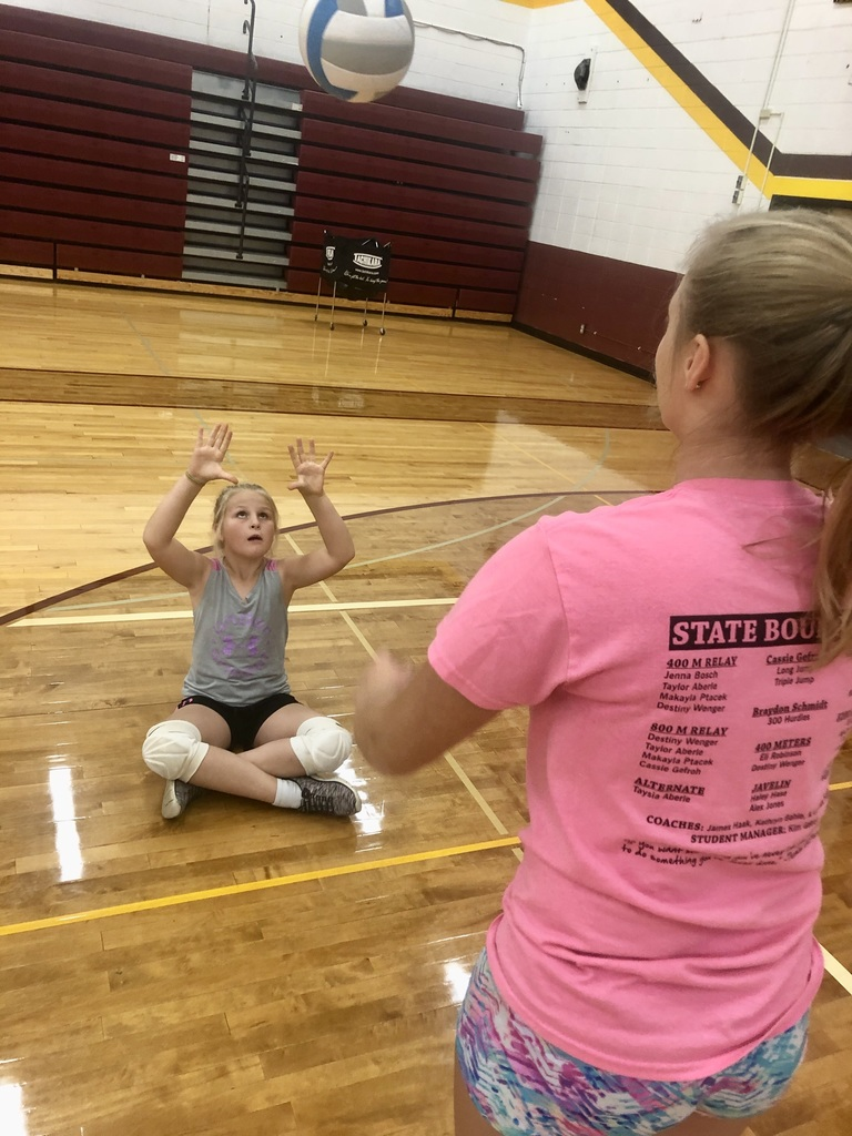 VolleyPal Drills