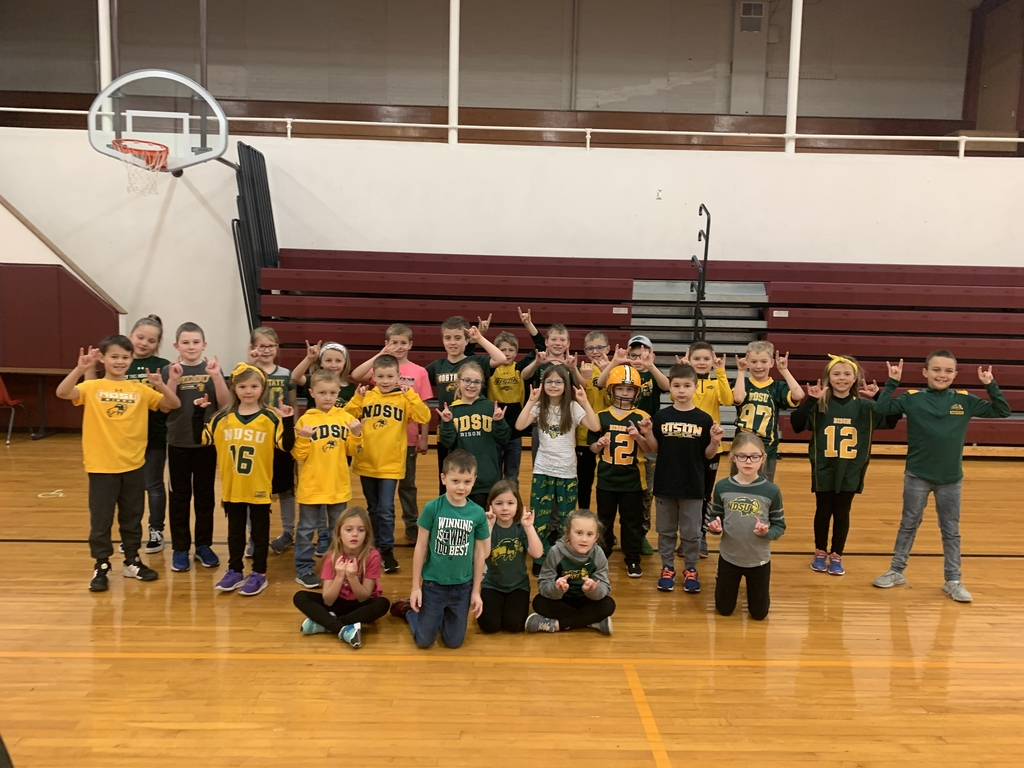 Elementary Bison Fans